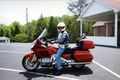 Goldwing 21263227 o.jpg