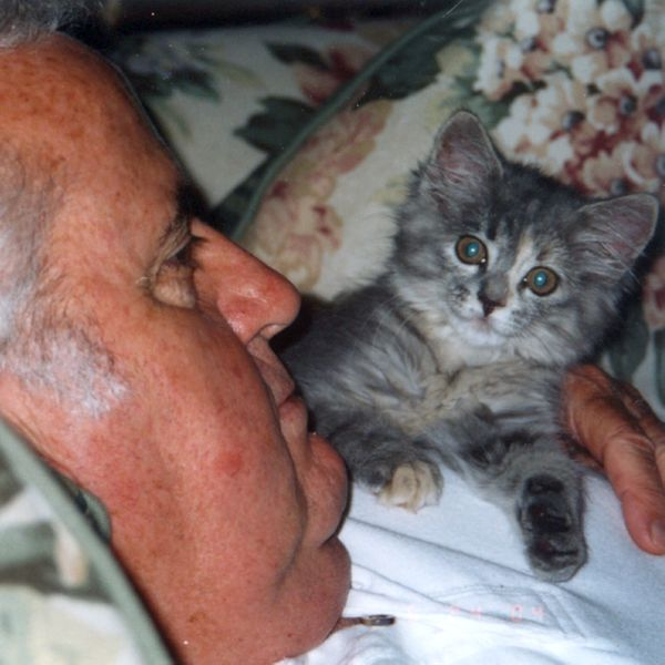 File:2006-06-24-Dad-Kitten.jpg