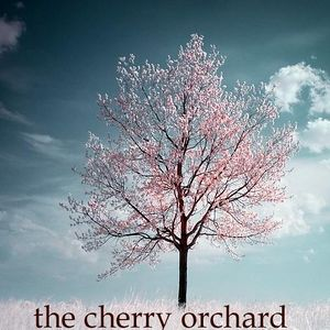 The-cherry-orchard.jpg